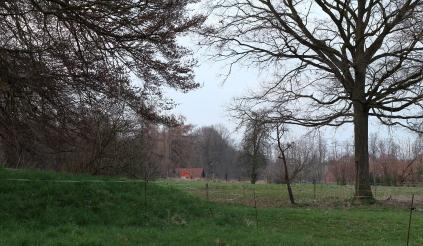 5a1 Pferdewiese gegenüber der Feuerwehr März 15