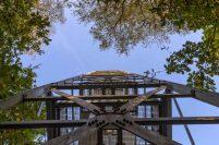 Feuerwachtturm - Die kleinen Pünktchen sind Marienkäfer, zigtausende.