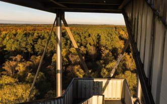 Auf dem Feuerwachtturm
