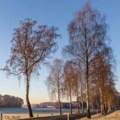 frostiger-morgen-11-von-13