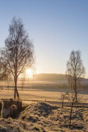 frostiger-morgen-12-von-13