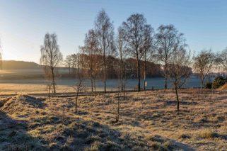 frostiger-morgen-13-von-13