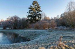frostiger-morgen-15