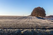 frostiger-morgen-5-von-13