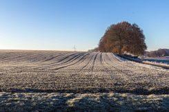 frostiger-morgen-5-von-13