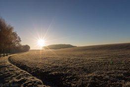 frostiger-morgen-7-von-13