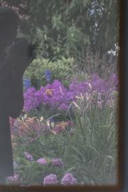 Garten im Spiegel