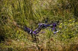 Fahrrad als Mül.l in der Wiese