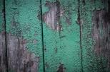 Verfall an der Hintertür - eine besondere Art von Schönheit. - Decay at the back door - a special kind of beauty.