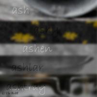 Ash Montage 96 ppi 1200
