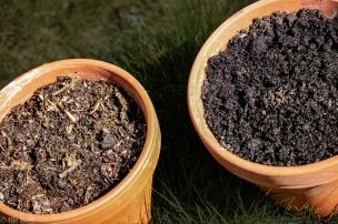 Am 9.4.2020: Kompost links, und rechts gekaufte Bio-Blumenerde.